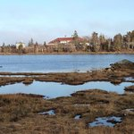 Inland lake and marsh
