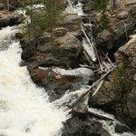 Adams Falls Trail Photo