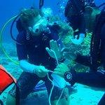 Teaching in Open Water