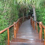 Path to the restaurant and lobby