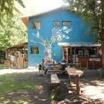 Foto de Camping & Hostel Los Coihues