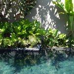 Если Вы останавливаетесь в вилле, в Вашем распоряжении уютный дворик с бассейном, шезлонгами....