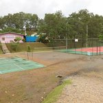 Tennis, volleyball & badminton courts