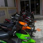 Scooters for rent
