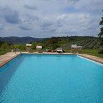 La nostra piscina con vista su vigneti ed oliveti