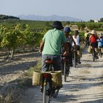 Amazing experience: descover the Penedès region of Catalonia by electric bike