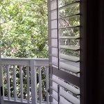 door to porch frm room