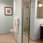 Bathroom with glass shower, no tub