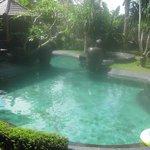 kolam renang bersih dan bagus