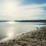 Choke Canyon Lake/Fishing