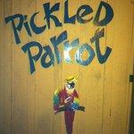 Pickled Parrot