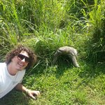 Panama Jeff and the Sloth