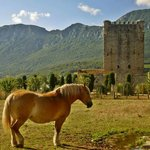 Torre de Lezana de Mena (Torre de los Velasco)