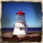 Enjoying the lighthouse on the cove.