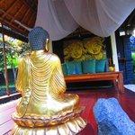 meditation sala