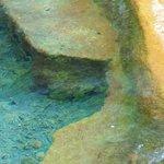 The springs pool