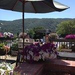 Patio garden table view