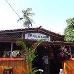Palmland