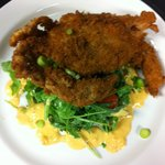 Soft Shell Blue Crab App