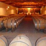 Each barrel contains 300 bottles of Chateau Mauvezin