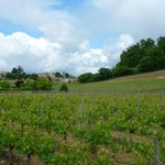 View from the Chateau towards Saint-Emilion