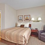 Suites great for Business Travelers and Families