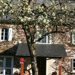 La façade au printemps