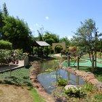 Just a beautiful garden