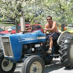 friendly guy on a tractor in the vineyards
