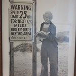 "Founder, ""Turtle Lady of South Padre Island"" - Ila Fox Loetscher"