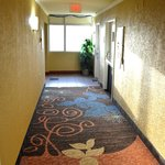 """Remodeling is """"in the process"""" with new carpets"""