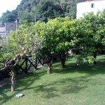 casale picture 2