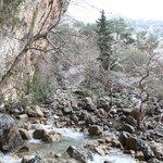 gorge of zaros
