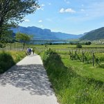 In bici verso il Lago di Caldaro
