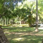 Photo of Constitution Park