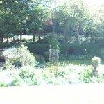 Woodlands Guest House照片
