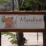 Mankwe sign it means leopard