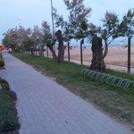 Passeggiata fronte mare