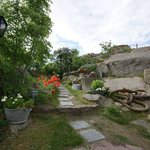Hagen / the Garden