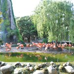 La Palmyre Zoo