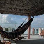 Loved the hammocks