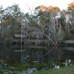 Magnolia Springs State Park