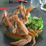 Softshell crab atop a curry sauce with minted cucumber and jasmine rice.