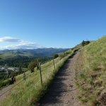 """Hiking up """"M"""" trail at the University of Montana June 2013"""