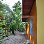 Photo de Casas La Selvatica