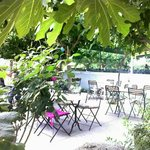 The leafy outdoor seating area at Rigani - pure bliss!