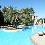 La très belle piscine