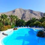 Wonderful pool view