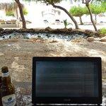 Офис в тени деревьев