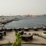 Photo of Al Qalzam Fisheries